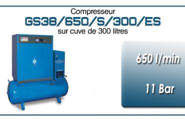Compresseur silencieux sur réservoir 300 litres avec sécheur type GS38–650 l/min