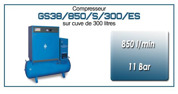 Compresseur silencieux sur réservoir 300 litres avec sécheur type GS38–850 l/min