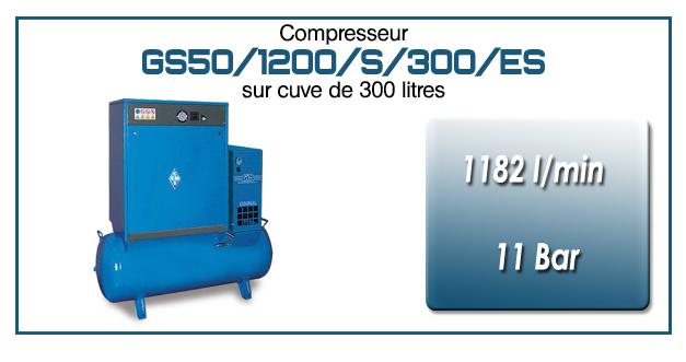 Compresseur silencieux sur réservoir 300 litres avec sécheur type GS50–1182 l/min