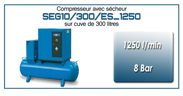 Compresseur à vis sur réservoir 300 litres avec sécheur type SEG10 – 1250 l/min