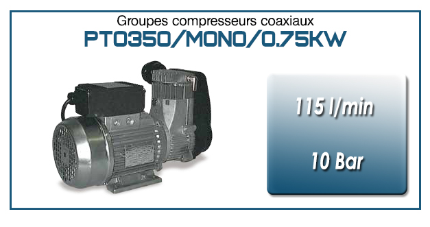 Moto-compresseur monocylindre Oilless type PTO350/MONO-0.75KW