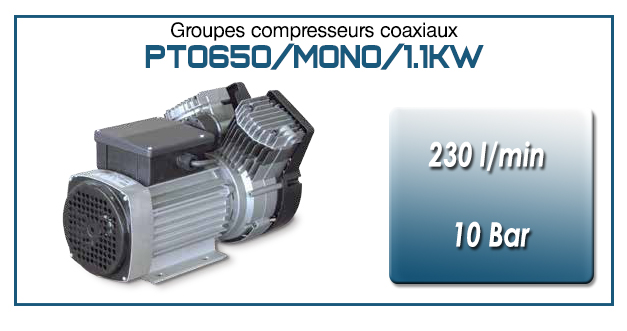 Moto-compresseur bicylindre Oilless type PTO650/MONO-1.1KW
