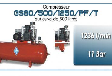Compresseur à courroie GS80-1236 l/min sur cuve 500 litres