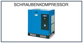 DE 11 Schraubenkompressor